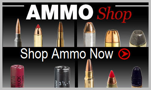 Ammo shop - Shop Ammo Now at basspro.com