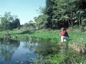 Angler fishing in a pond