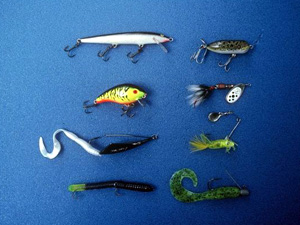Layout of a variety of fishing lures