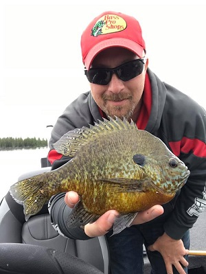 Pros4-1Source's Keith Worrall with a big bluegill caught on Berkley Gulp