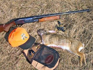 Rabbit hunting gear needed and harvested rabbit