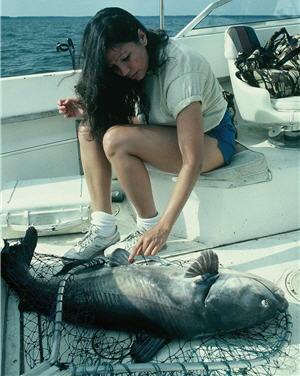 angler catfish1