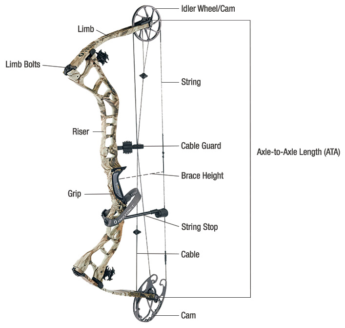 The basic parts with namesof a compound bow,