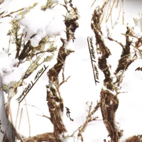 True Timber Snow Camo Pattern