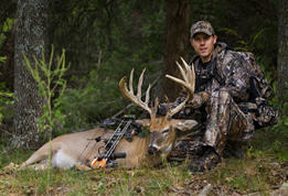 deer hunter buck