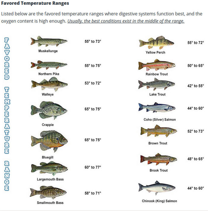 Favored water temperature ranges for, credit Mepps Fishing