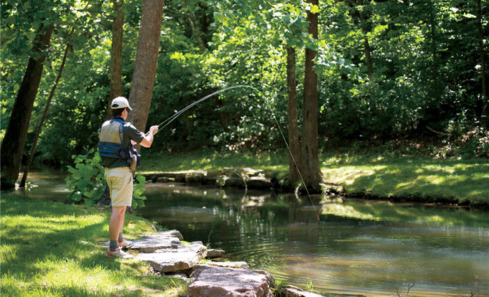 fly fishing beginner
