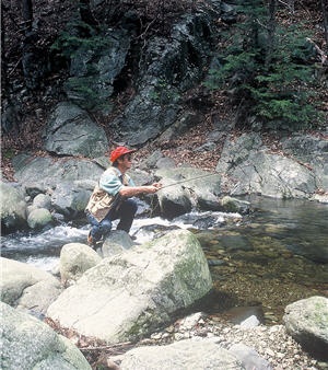 Fly angler squating on a rock casting his fly rod into a stream