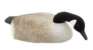 goose shell decoy RHD