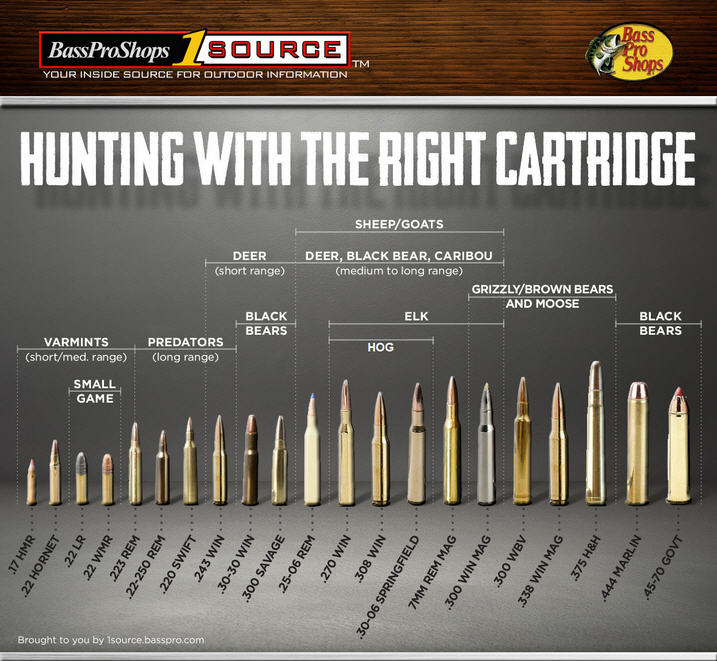 Rifle ammo buying guide chart