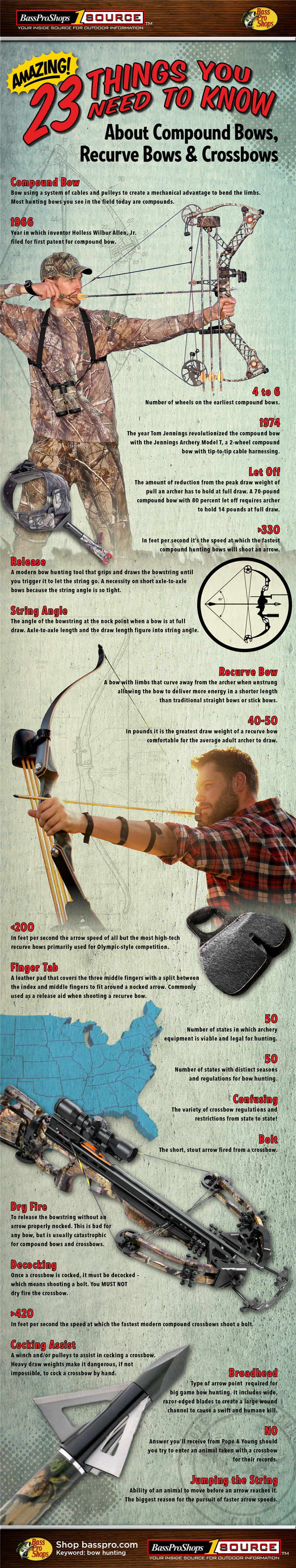 Infographic about compound bows, recurve bows & crossbows
