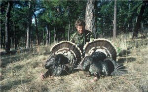 Hunter at edge of woods with two large turkeys