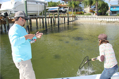 2 Anglers netting a sheepshead catch off a dock