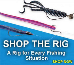 Shop the fishing rig