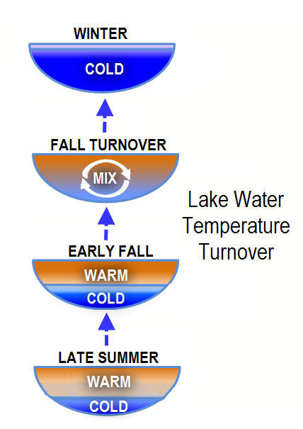 Cycles of lake water warm and cold temperatures to full mix at turnover from late summer to winter