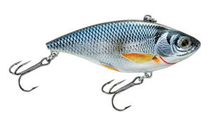Shop LiveTarget golden shiners at basspro.com