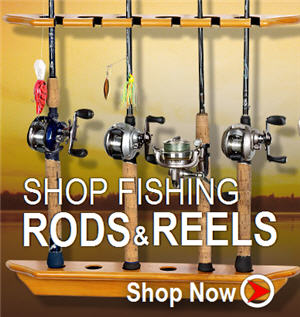 shop fishing rod reel