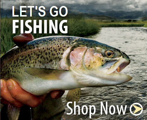 shop fly fishing