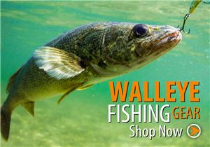 shopping walleye banner