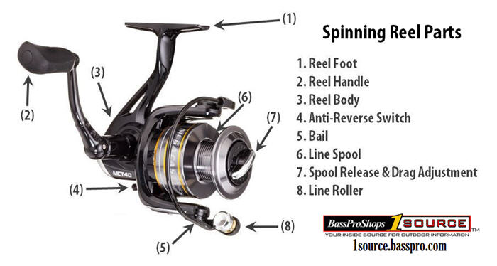Spinning Reel Bail Arm Diagram - Wiring Diagram General