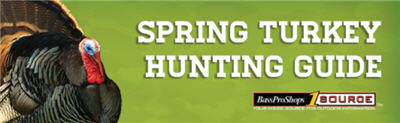 turkey hunting guide spring