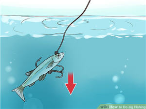 vertical jigging wikiHow