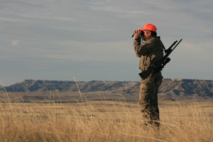 Hunter glassing for deer
