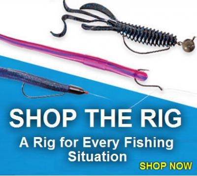 1Source Banner: Shop 10 Top Fishing Rigs