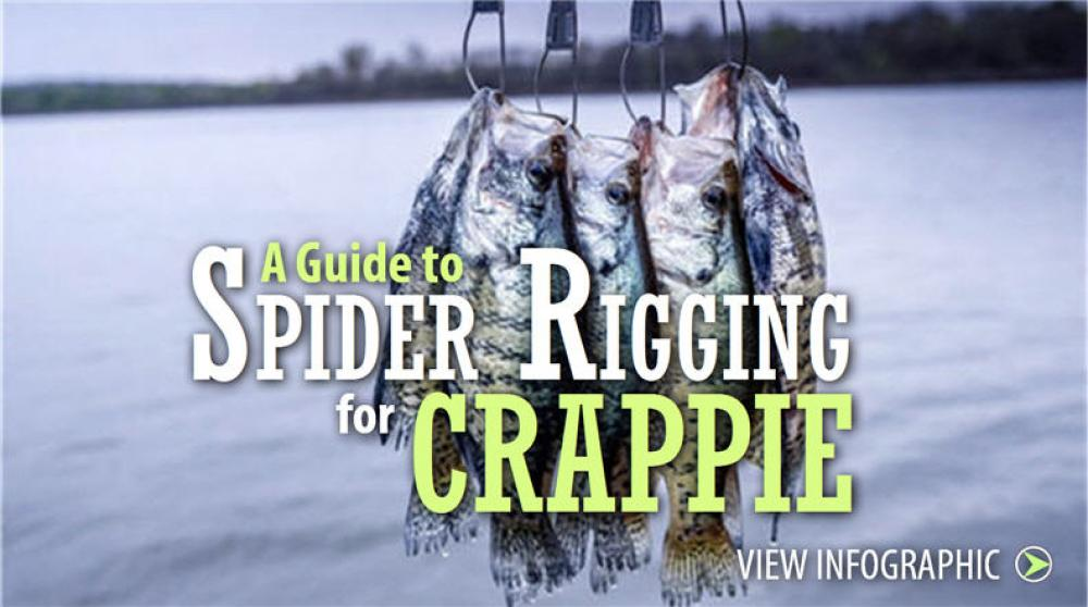 Rigging for Crappie Fishing