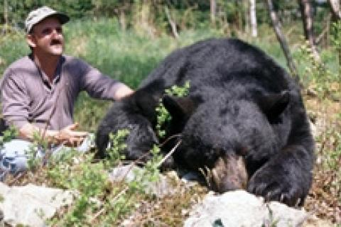 News & Tips: Black Bear Basic Baiting and Hunting Tips...