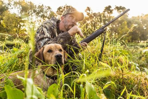 News & Tips: 3 Ways to Develop Safety and Trust with Your Hunting Dog...