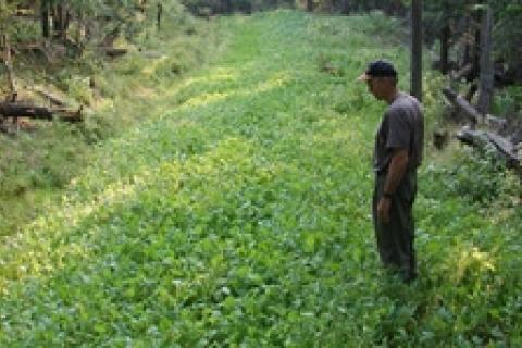 News & Tips: Frost Seeding: An Early Spring Food Plot Fixer...