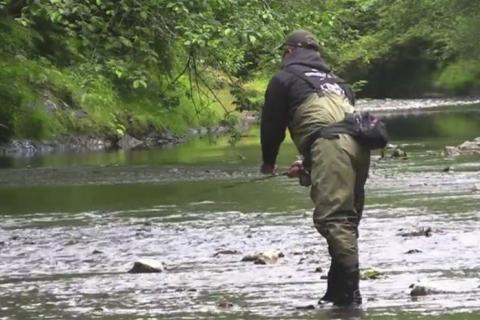 News & Tips: Fish the Finest Brook Trout Streams at Shenandoah Park...