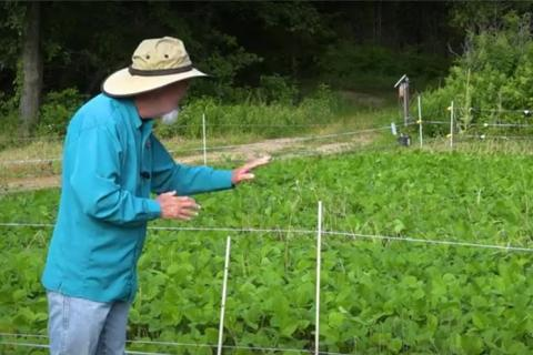 News & Tips: Food Plots: Predators, Protection, and Possibilities (video)...