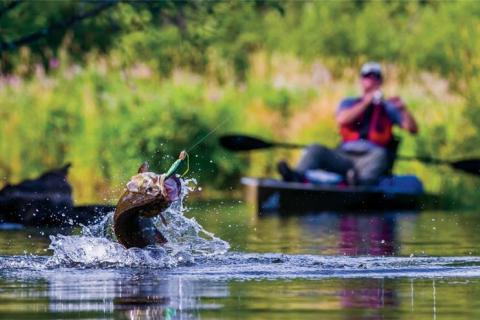 News & Tips: Quiz: Chris Payne's Everything You Wanted to Know About Kayaks & Fishing...
