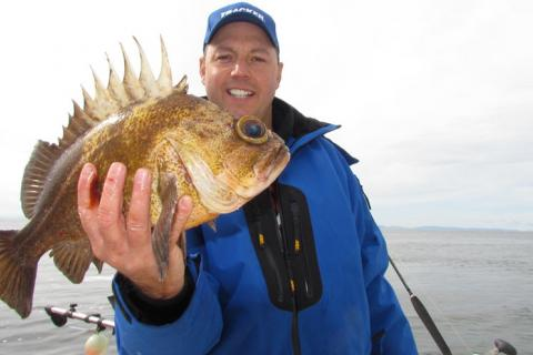 News & Tips: Jigging For Rockfish on the Pacific Ocean (video)...