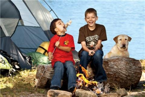 News & Tips: The Perfect Roasted Marshmallow - Camping Tip...
