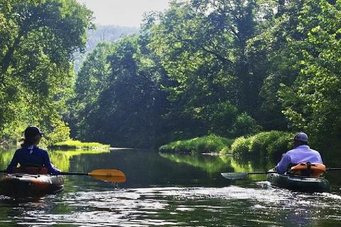 2 Kayakers floating down a scenic river in Missouri with dense foliage and trees on both sides with the sun peeking through