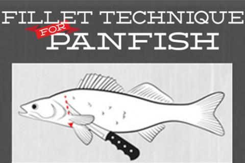 News & Tips: 6 Easy How-To Steps to Fillet Bass, Crappie & Perch (infographic)...