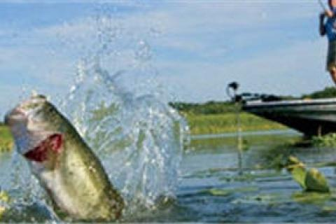 News & Tips: 6 Dos and Don'ts of Fishing Etiquette