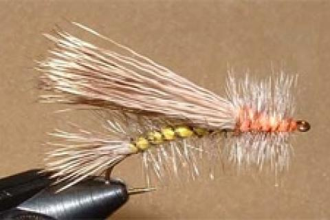 News & Tips: How to Tie the Stimulator Fly: Step by Step Instructions...