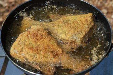 News & Tips: A Simple Guide to Frying Fresh Fish at Camp...