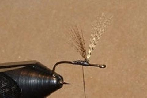 News & Tips: Fly Fishing: How to Tie Two Types of Upright Wings on Dry Flies...