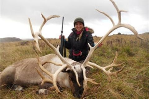 News & Tips: Looking for a Unique Hunting Adventure? Try Reindeer in Alaska...