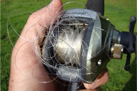 News & Tips: 8 Things You Can Do to Prevent a Fishing Line Birds Nest...