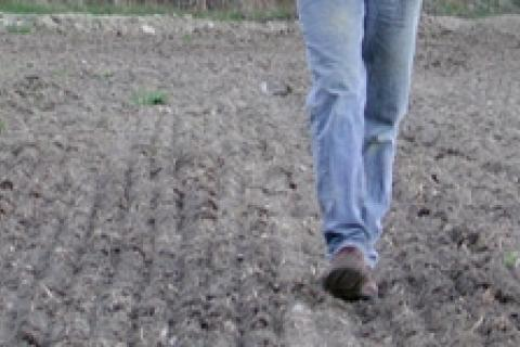 News & Tips: Food Plot Basics: It's All in the Dirt...