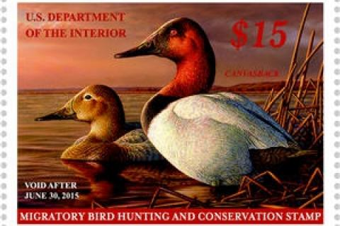 News & Tips: How Hunters Fund Conservation Through the Federal Duck Stamp Program...