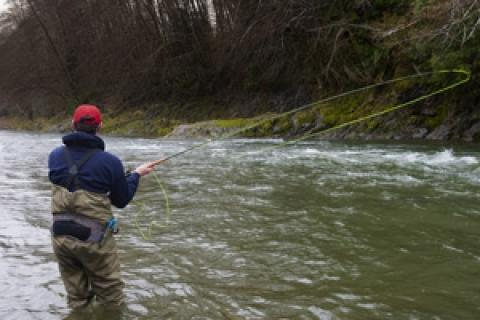 News & Tips: Understanding the Functions of Fly Rods...