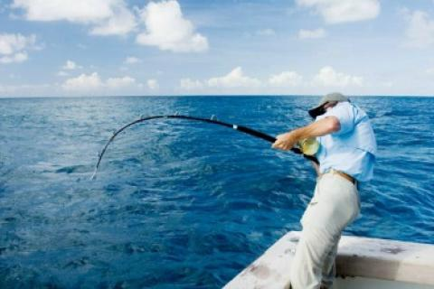 News & Tips: The Big Fish Bucket List