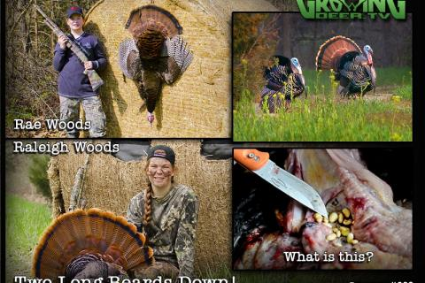 News & Tips: Awesome Weekend Turkey Hunting With The Girls: 2 Gobblers Down!...